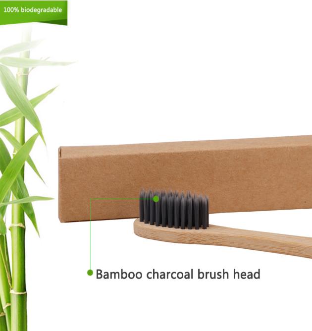 100% biodegradable.png