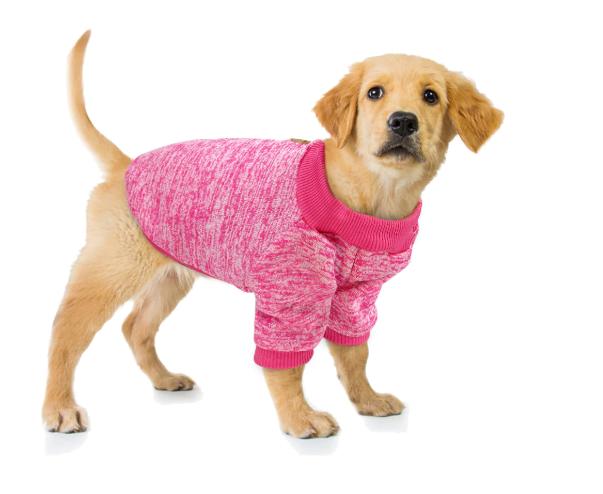Petsweater4